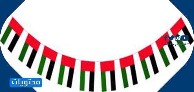 العيد الوطني لدولة الإمارات العربية المتحدة 49 إطارات
