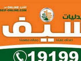فروع صيدليات سيف بالقاهرة